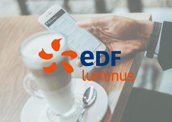 EDF luminus logo